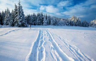 winterreise-deuber-resisen-busreisen